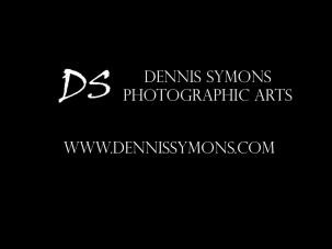 www.dennissymons.com